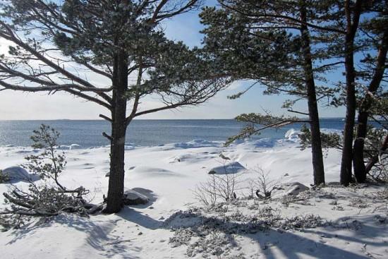 Voyage en Finlande sur mesure