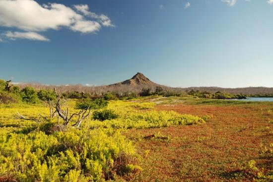 Voyage aux Galapagos sur mesure