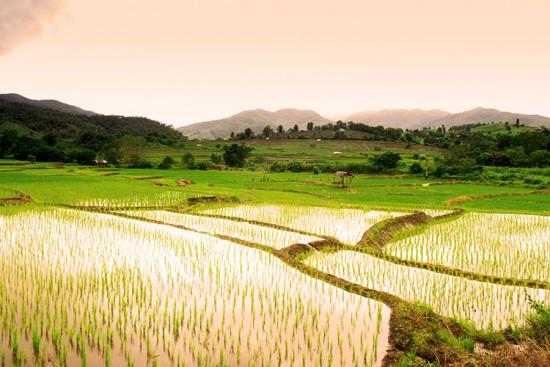 Voyage au Laos sur mesure