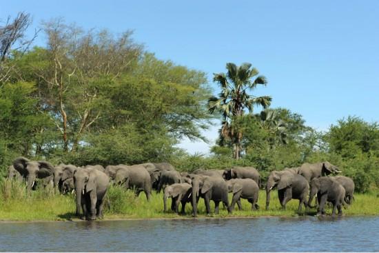 Voyage au Malawi sur mesure