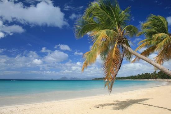Voyage en Martinique sur mesure