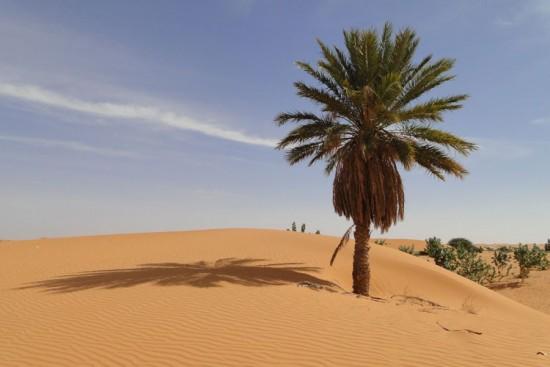 Voyage en Mauritanie sur mesure