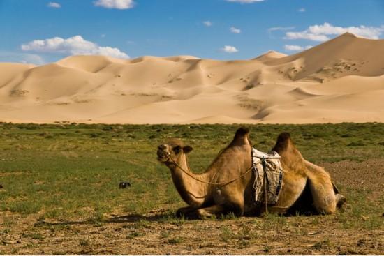 Voyage en Mongolie sur mesure