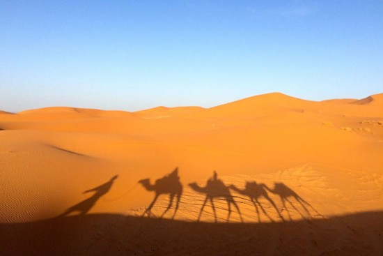 Voyage au Sahara occidental sur mesure