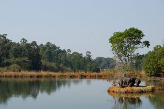 Voyage au Swaziland sur mesure