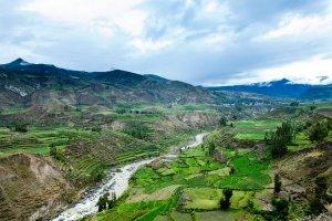 Du Pacifique à l'Amazonie au Pérou