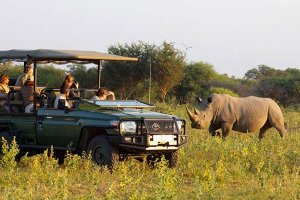 Autotour et safari en Afrique du Sud