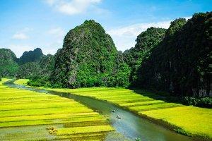 Des montagnes du Tonkin aux rizières de l'Anman