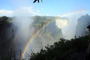 L'essentiel de l'Afrique du Sud et les chutes Victoria !