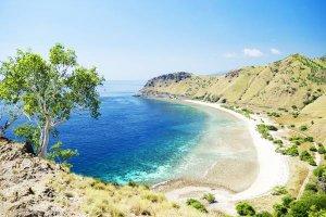 Timor oriental