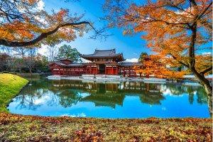 Relaxation au Japon