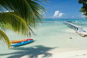 Voyage en immersion dans la culture Polynésienne